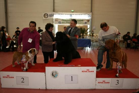 cacs 2012 025 25-11-2012