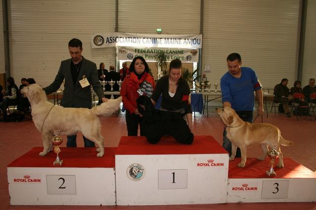 cacs 2012 056 25-11-2012