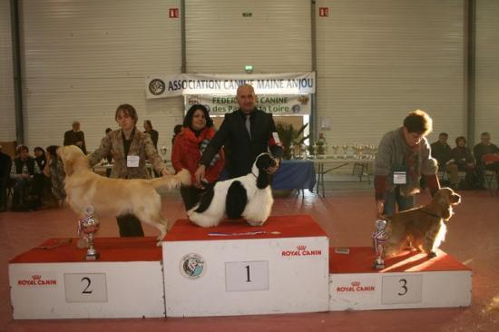 cacs 2012 059 25-11-2012