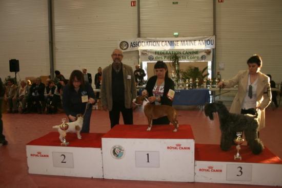 cacs 2012 061 25-11-2012