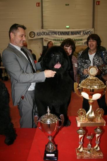 cacs 2012 098 25-11-2012