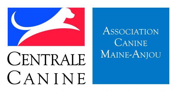 Logo maine anjou scc