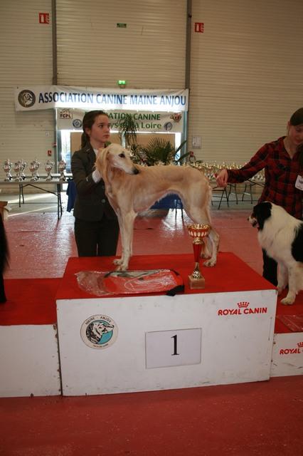 cacs 2012 004 25-11-2012