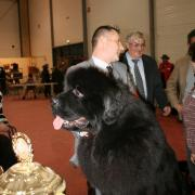 cacs 2012 100 25-11-2012